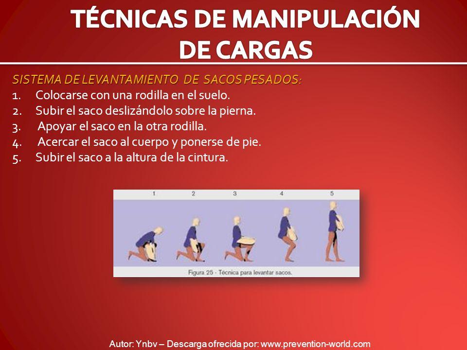 Autor: Ynbv – Descarga ofrecida por: www.prevention-world.com SISTEMA DE LEVANTAMIENTO DE SACOS PESADOS: 1.Colocarse con una rodilla en el suelo. 2.Su