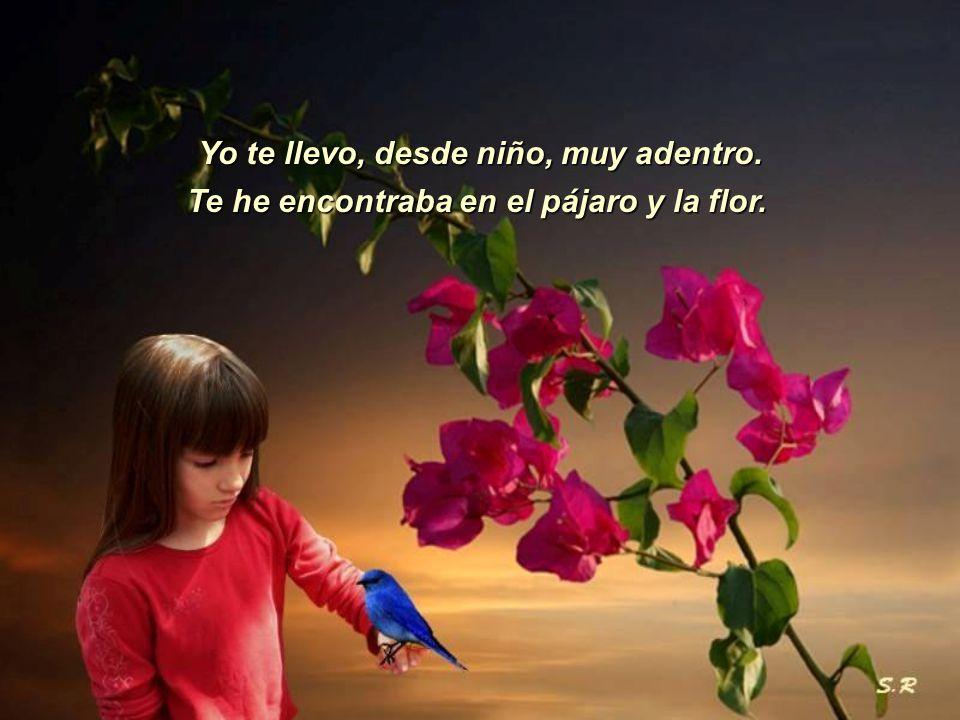 Yo te llevo, desde niño, muy adentro. Te he encontraba en el pájaro y la flor.