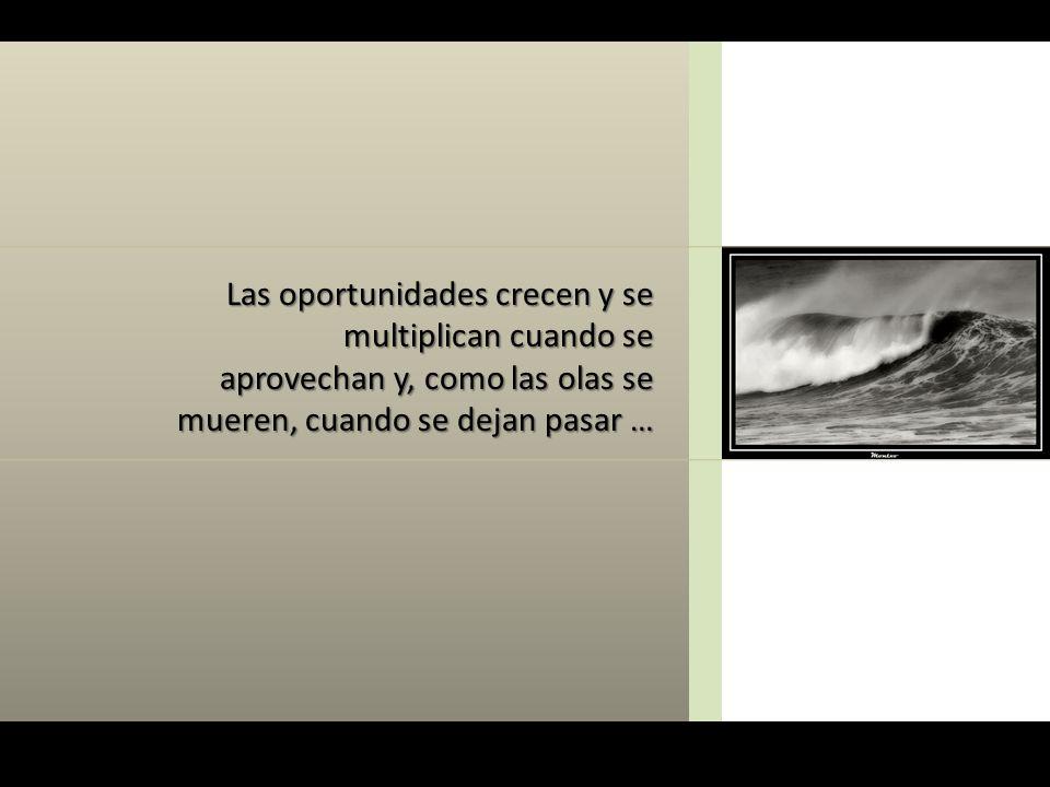 Las oportunidades crecen y se multiplican cuando se aprovechan y, como las olas se mueren, cuando se dejan pasar …