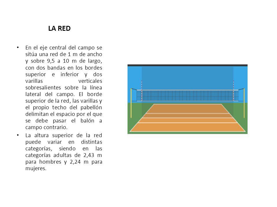 LA RED En el eje central del campo se sitúa una red de 1 m de ancho y sobre 9,5 a 10 m de largo, con dos bandas en los bordes superior e inferior y do