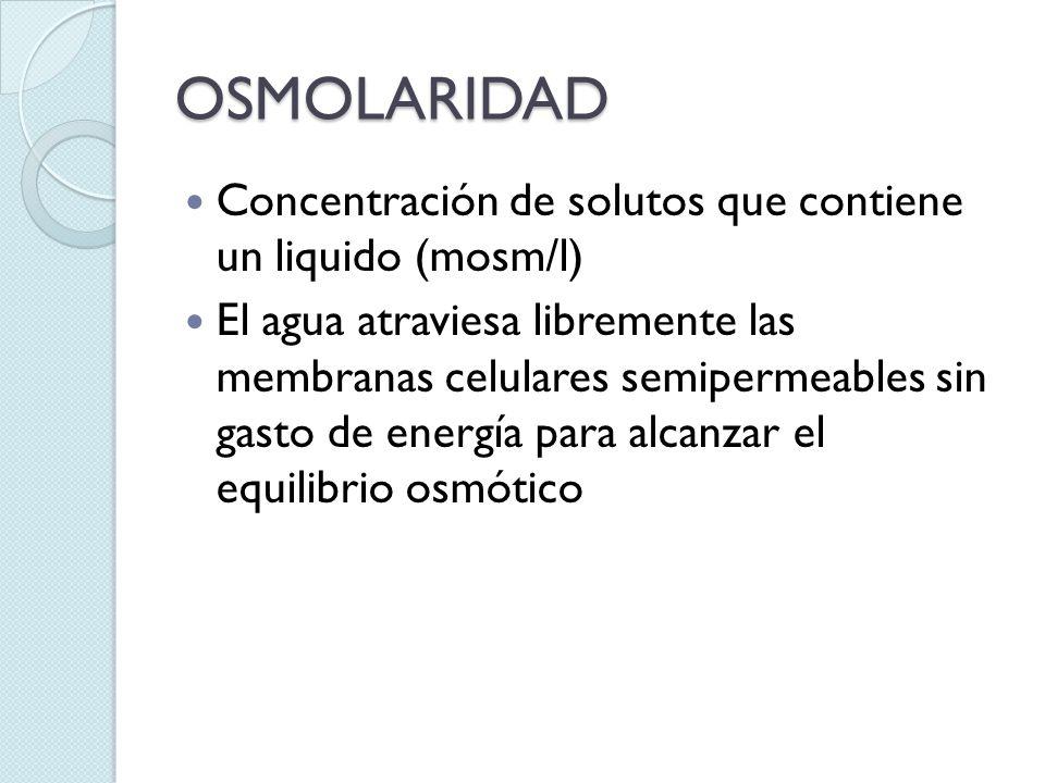 OSMOLARIDAD Concentración de solutos que contiene un liquido (mosm/l) El agua atraviesa libremente las membranas celulares semipermeables sin gasto de