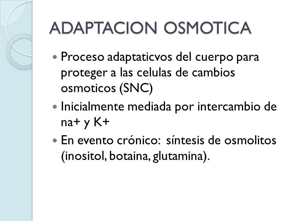 ADAPTACION OSMOTICA Proceso adaptaticvos del cuerpo para proteger a las celulas de cambios osmoticos (SNC) Inicialmente mediada por intercambio de na+