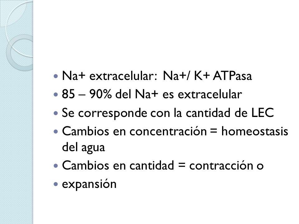 Na+ extracelular: Na+/ K+ ATPasa 85 – 90% del Na+ es extracelular Se corresponde con la cantidad de LEC Cambios en concentración = homeostasis del agu