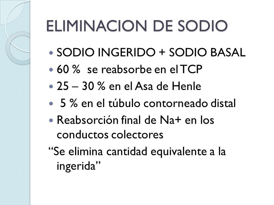 ELIMINACION DE SODIO SODIO INGERIDO + SODIO BASAL 60 % se reabsorbe en el TCP 25 – 30 % en el Asa de Henle 5 % en el túbulo contorneado distal Reabsor