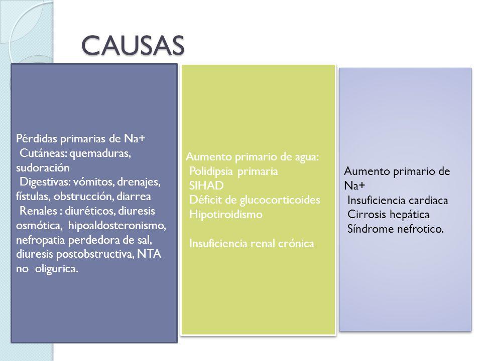 CAUSAS Pérdidas primarias de Na+ Cutáneas: quemaduras, sudoración Digestivas: vómitos, drenajes, fístulas, obstrucción, diarrea Renales : diuréticos,