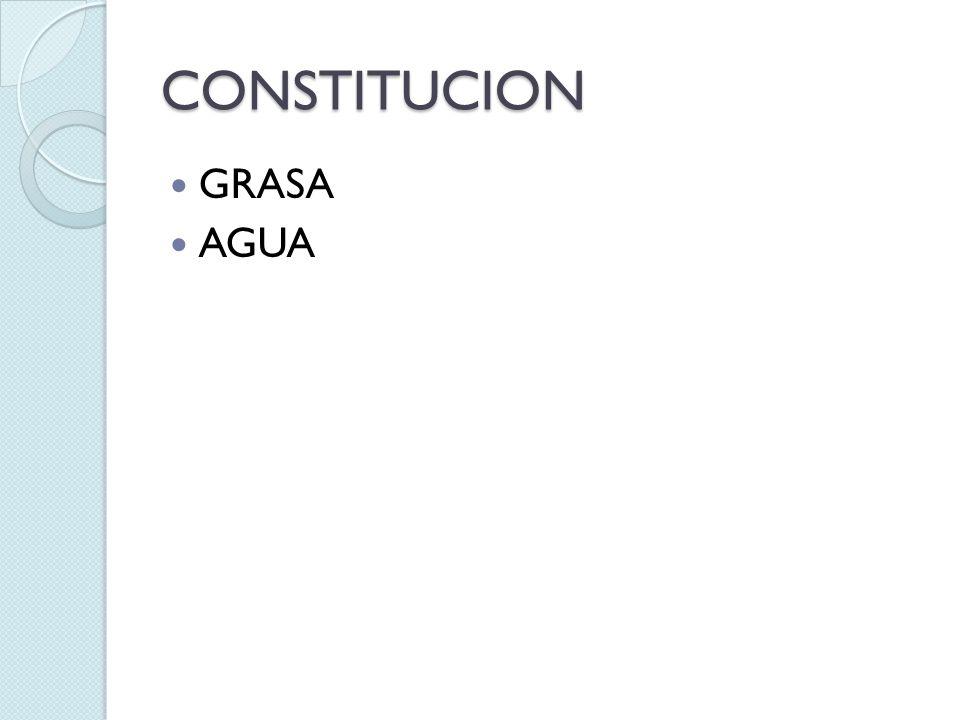 CONSTITUCION GRASA AGUA