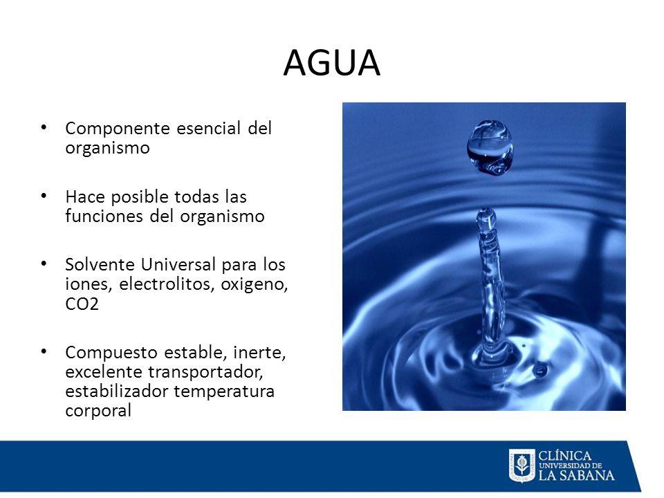AGUA Componente esencial del organismo Hace posible todas las funciones del organismo Solvente Universal para los iones, electrolitos, oxigeno, CO2 Compuesto estable, inerte, excelente transportador, estabilizador temperatura corporal