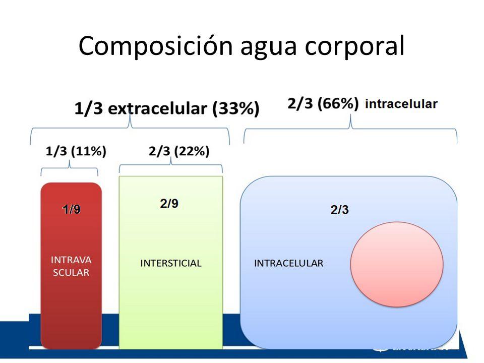 Composición agua corporal