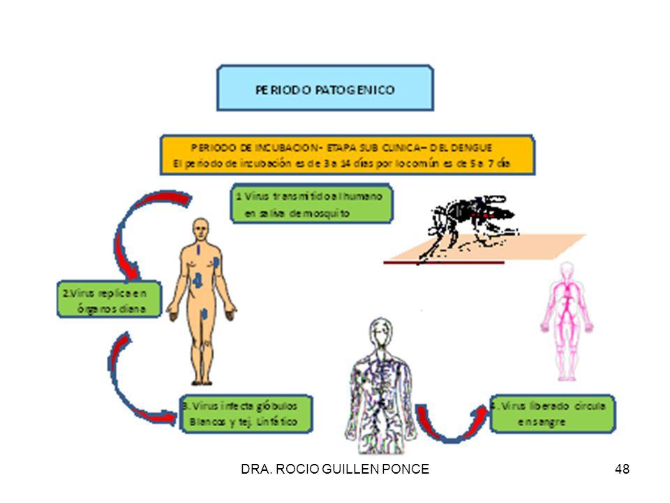 """La presentaci�n """"DRA. ROCIO GUILLEN PONCE1 Si no quiere enfermarse ..."""