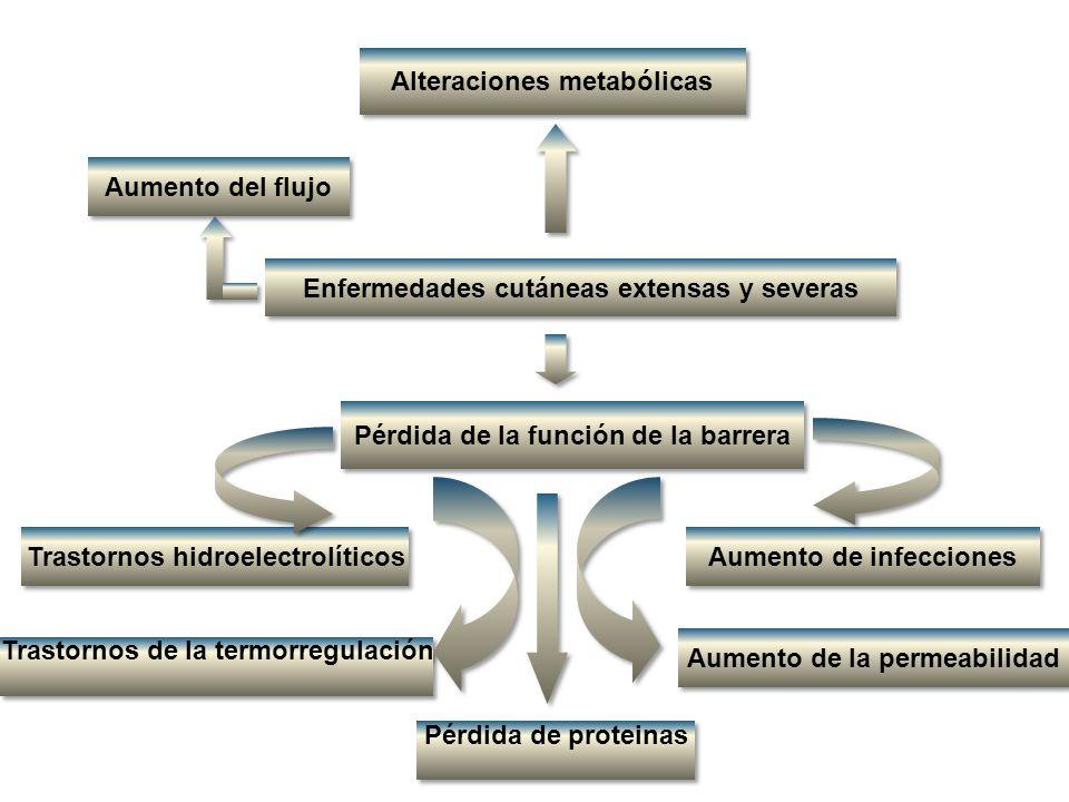 REACCIONES ADVERSAS MEDICAMENTOSAS CUTÁNEAS