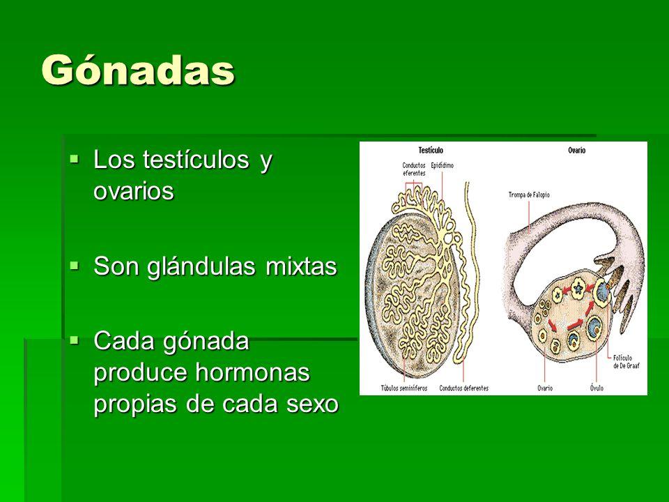 Arimidex steroids - Materials