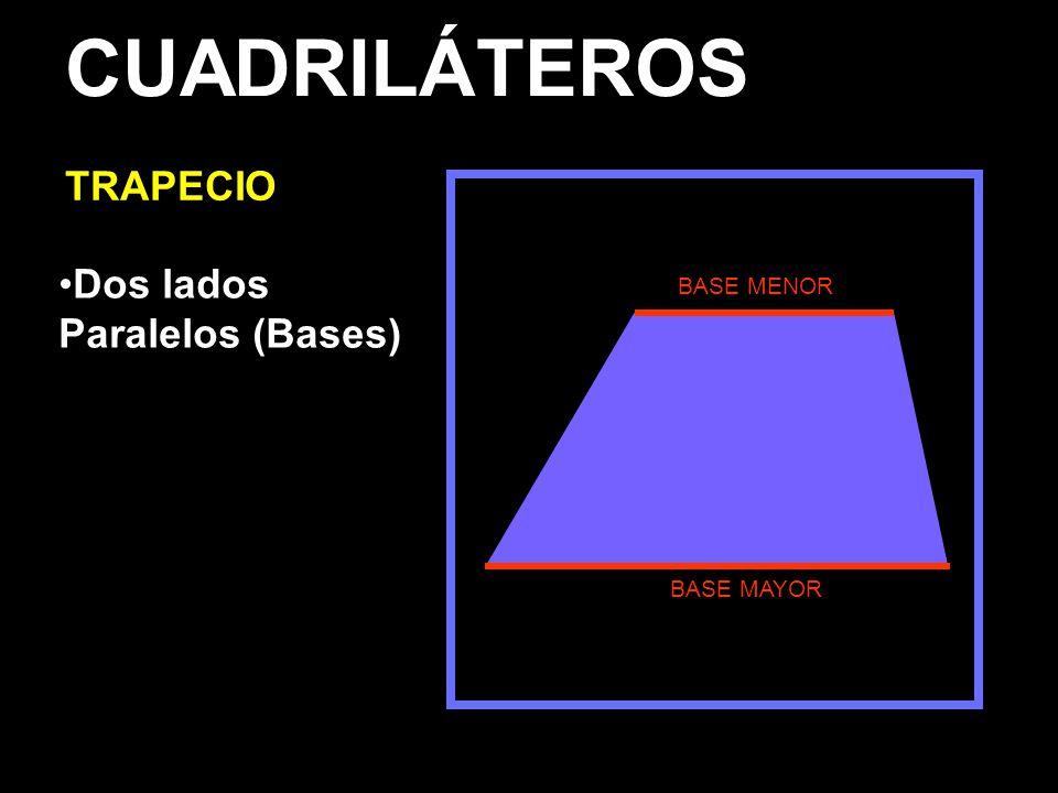 CUADRILÁTEROS TRAPECIO Dos lados Paralelos (Bases) BASE MAYOR BASE MENOR