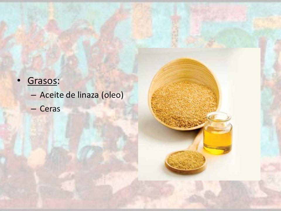 linaza oleo: