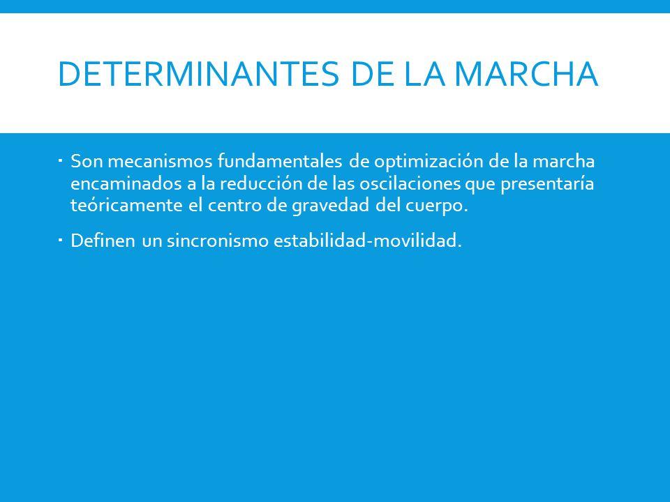 DETERMINANTES DE LA MARCHA  Son mecanismos fundamentales de optimización de la marcha encaminados a la reducción de las oscilaciones que presentaría