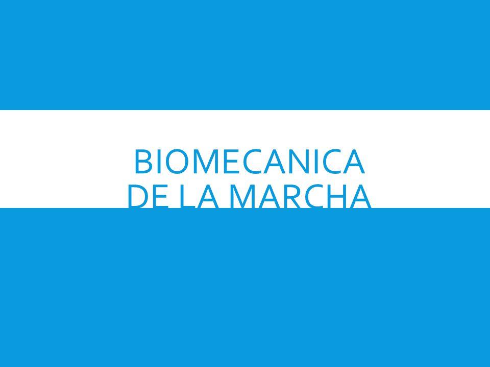 BIOMECANICA DE LA MARCHA