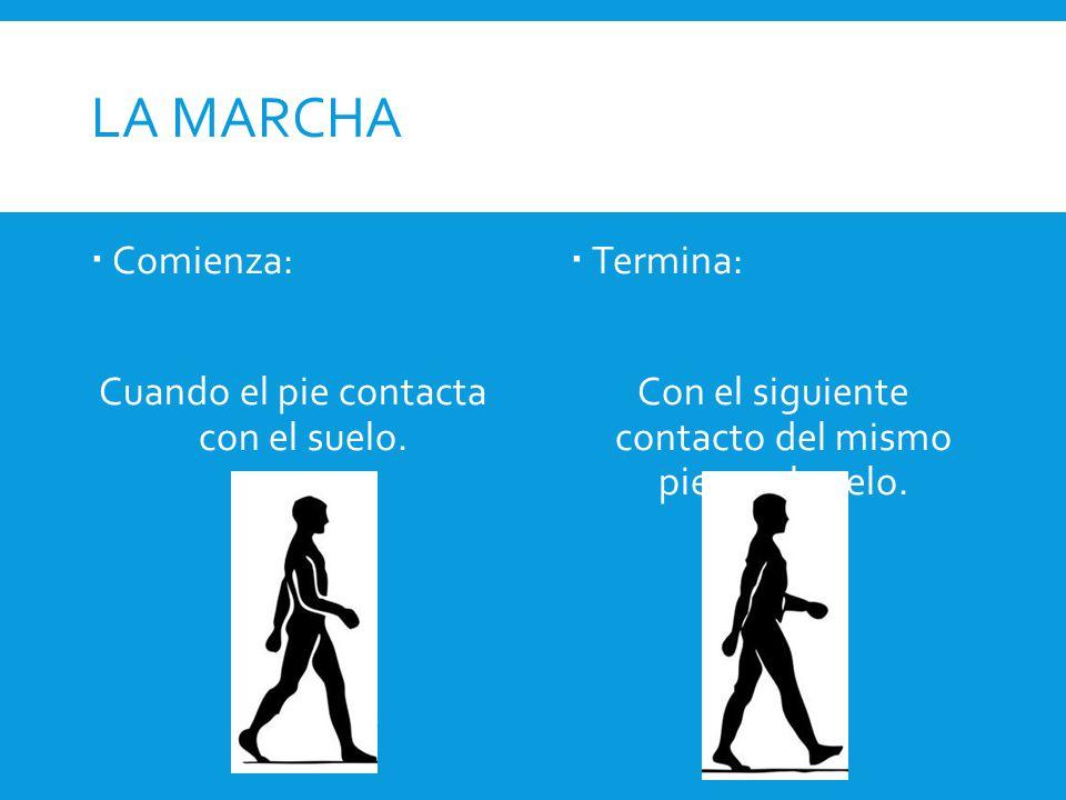 LA MARCHA  Comienza: Cuando el pie contacta con el suelo.  Termina: Con el siguiente contacto del mismo pie en el suelo.