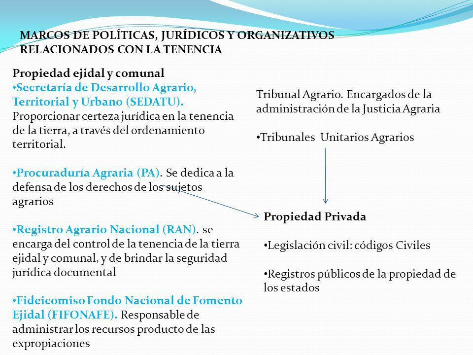SEMINÁRIO LATINO-AMERICANO DE POLÍTICAS AGRÁRIA E FUNDIÁRIA EL CASO ...