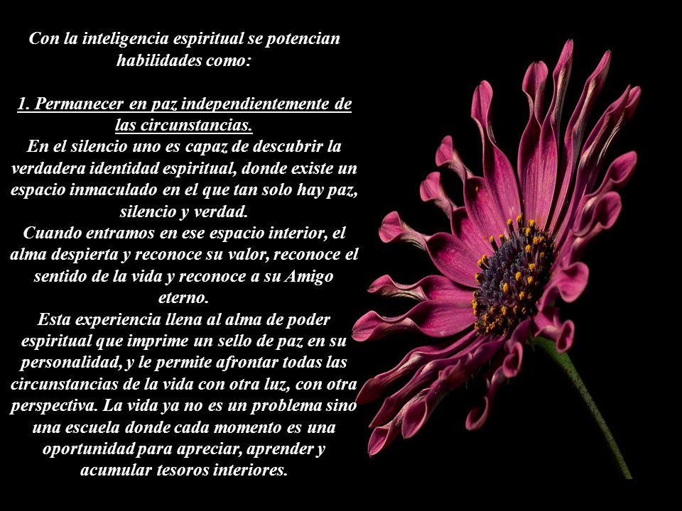 La inteligencia espiritual está por encima de la inteligencia operativa, la que nos permite resolver problemas mediante el razonamiento lógico.
