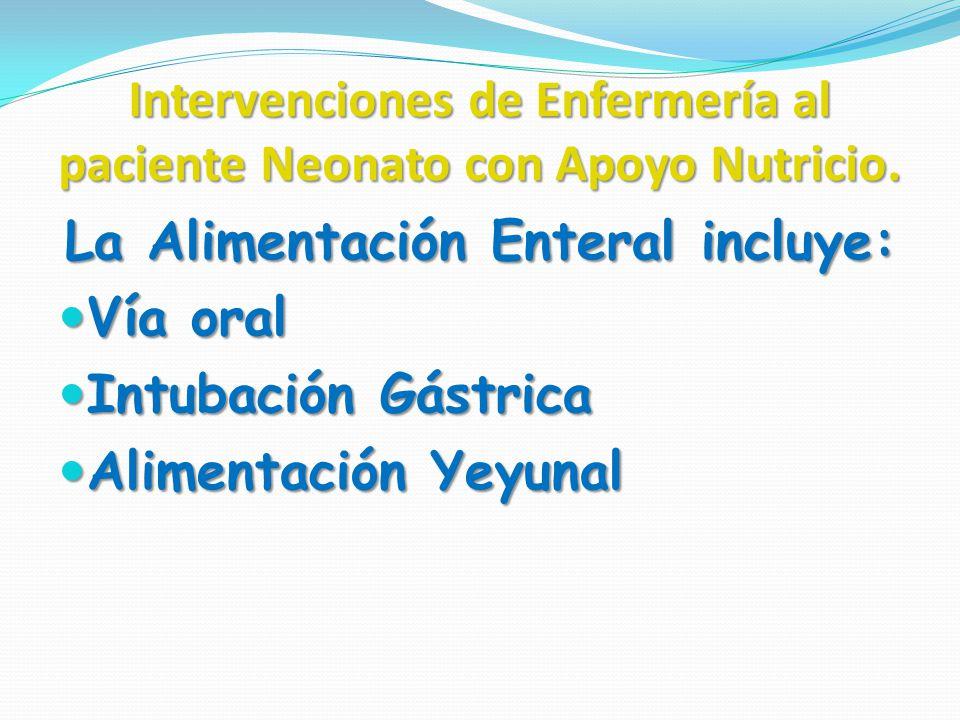Intervenciones de Enfermería al paciente Neonato con Apoyo Nutricio. La Alimentación Enteral incluye: Vía oral Vía oral Intubación Gástrica Intubación