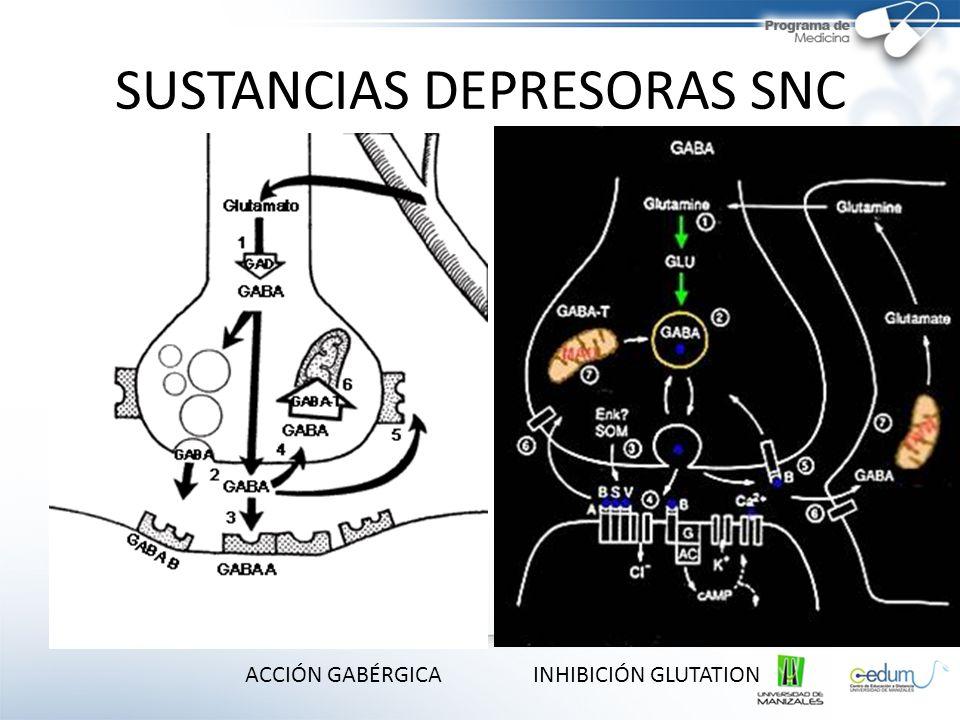 SUSTANCIAS DEPRESORAS SNC ACCIÓN GABÉRGICAINHIBICIÓN GLUTATION