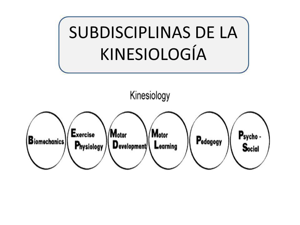 SUBDISCIPLINAS DE LA KINESIOLOGÍA
