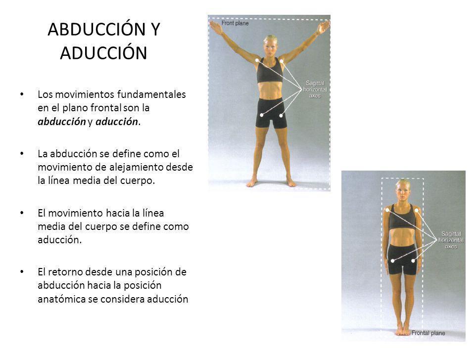 ABDUCCIÓN Y ADUCCIÓN Los movimientos fundamentales en el plano frontal son la abducción y aducción. La abducción se define como el movimiento de aleja
