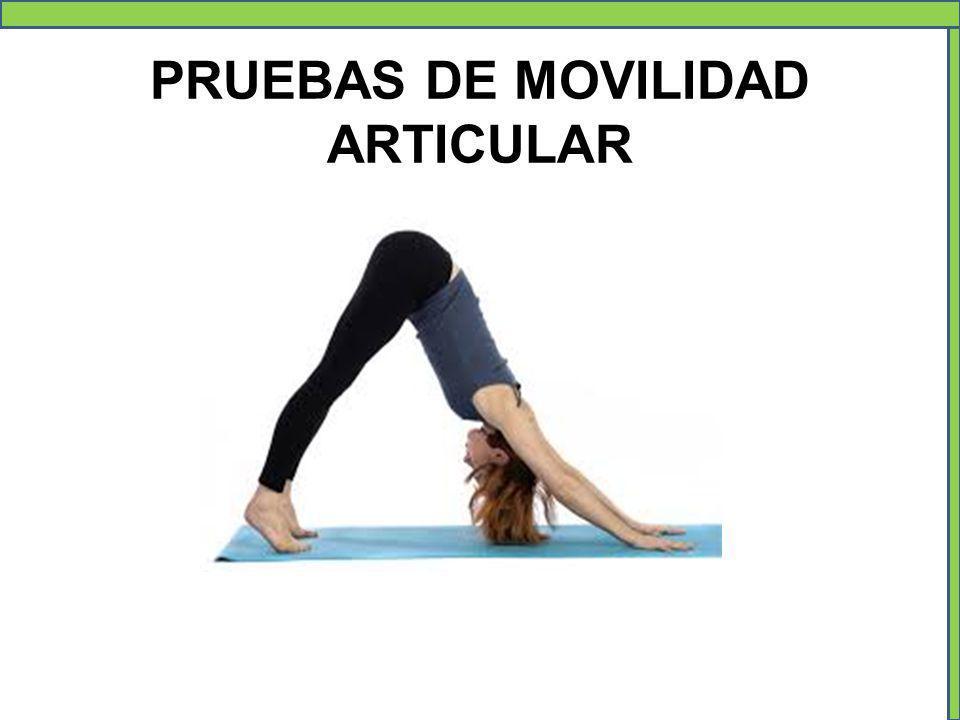 PRUEBAS DE MOVILIDAD ARTICULAR