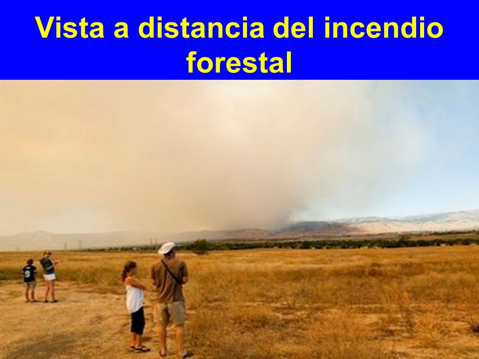 Vista a distancia del incendio forestal