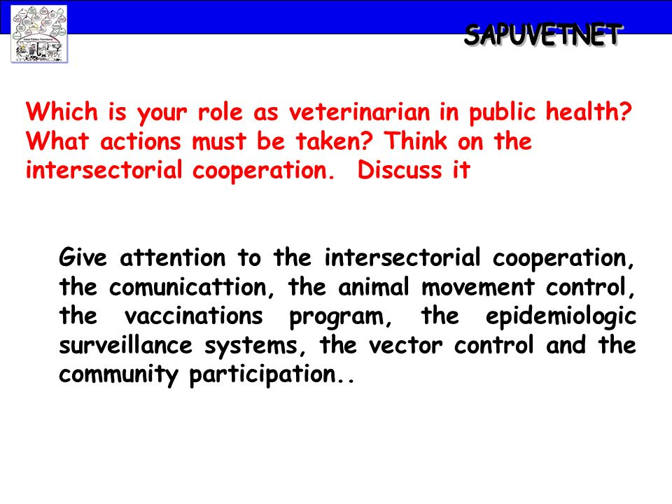 Which is your role as veterinarian in public health.