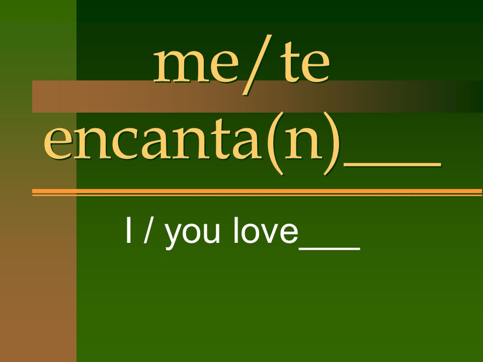 me/te encanta(n)___ I / you love___