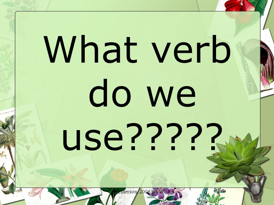 M. Emerson, 2006 BVW What verb do we use