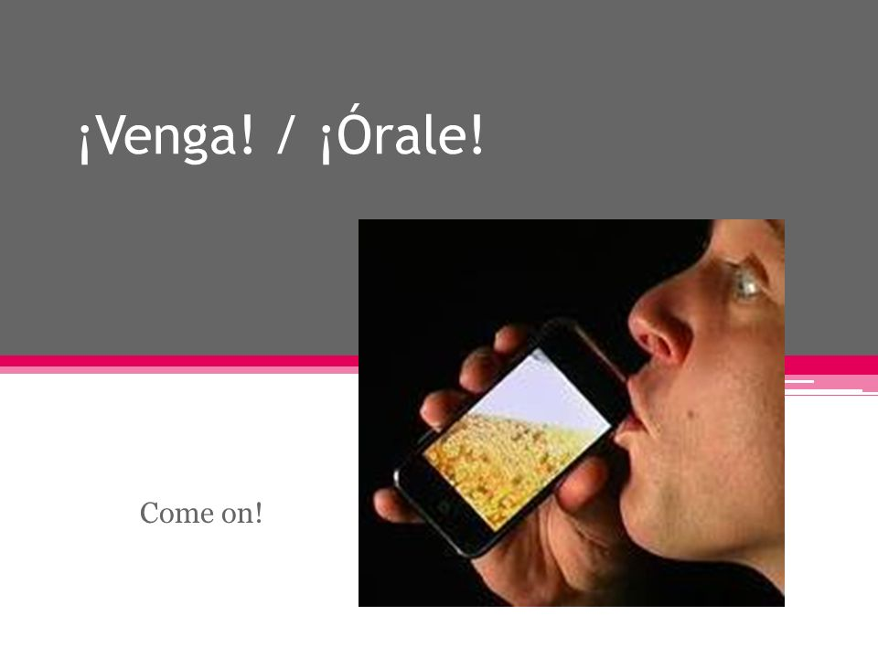 ¡Venga! / ¡Órale! Come on!