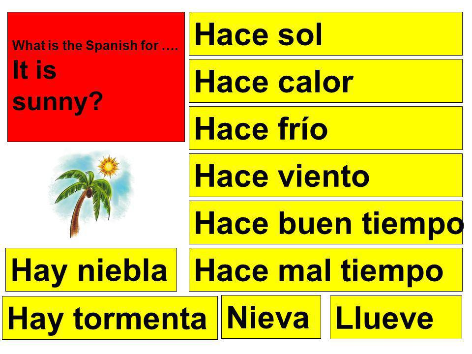 1.Hace calor 2.Hace frío 3.Hace sol 4.Hace viento 5.Hace fresco 6.Llueve 7.Nieva 8.Hay tormenta 9.Hay niebla 10.Hace buen tiempo 11.Hace mal tiempo Its hot Its cold Its sunny Its windy Its chilly Its raining Its snowing Theres a storm Theres fog Its good weather Its bad weather