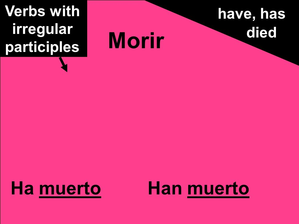 Ha muertoHan muerto Morir have, has died Verbs with irregular participles