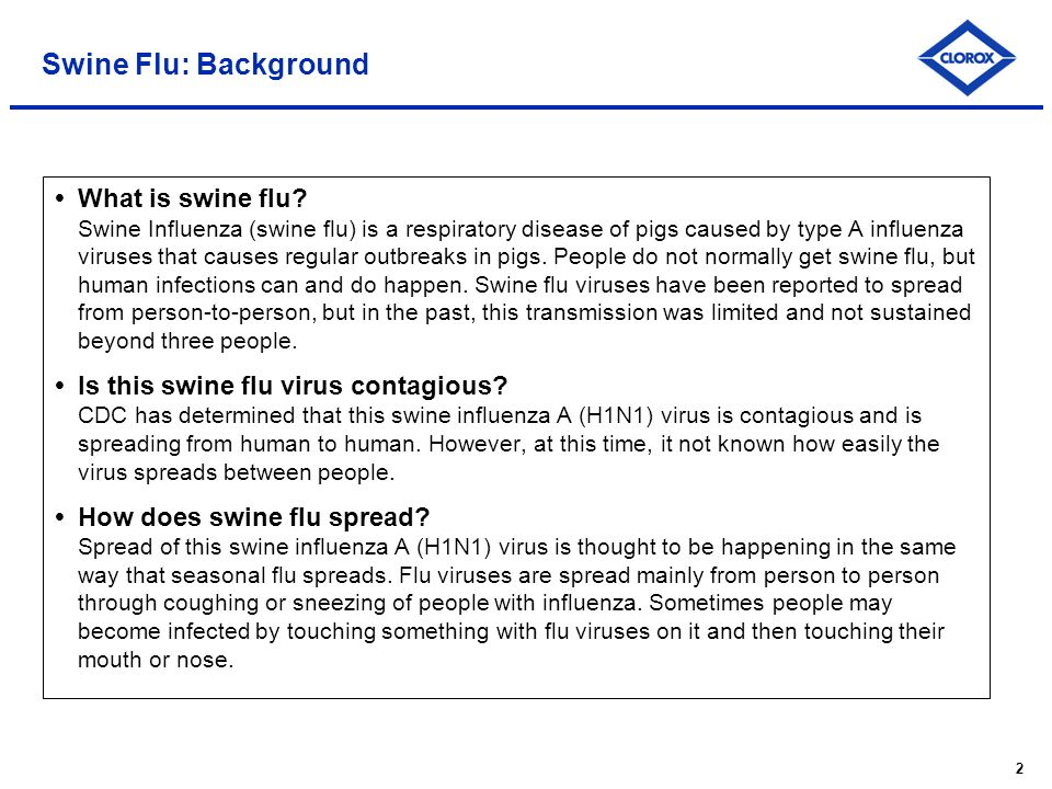 2 Swine Flu: Background What is swine flu.
