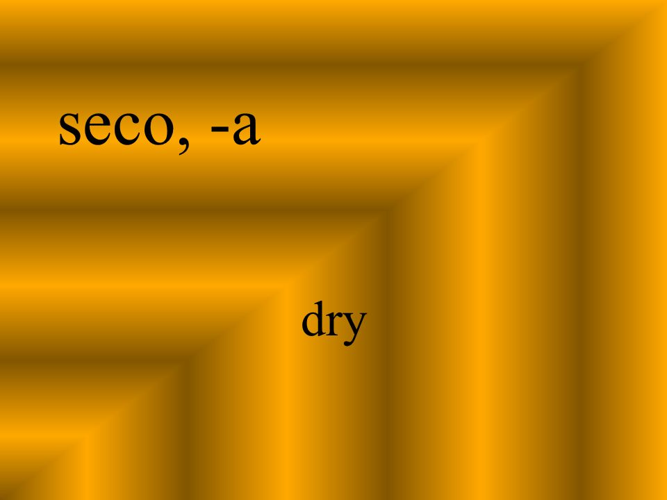 seco, -a dry