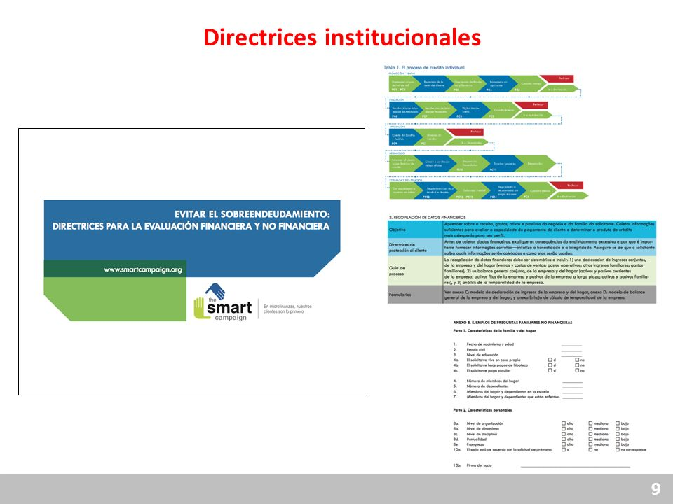 9 Directrices institucionales