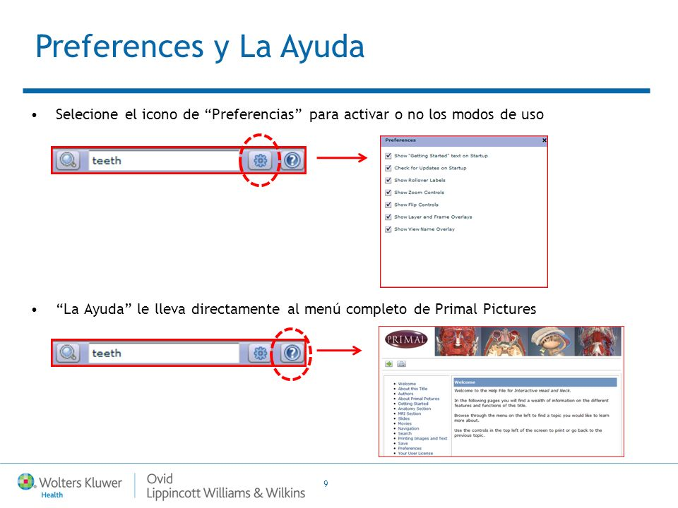 Ovid Training Department 2011 Primal Pictures Guia de Usuario (v.1.3 ...