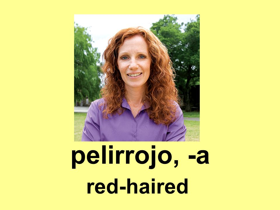 pelirrojo, -a red-haired