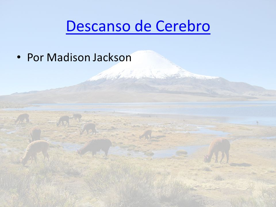 Descanso de Cerebro Por Madison Jackson