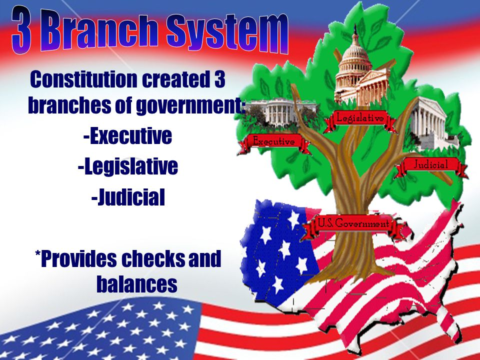 Constitution created 3 branches of government: -Executive -Legislative -Judicial *Provides checks and balances