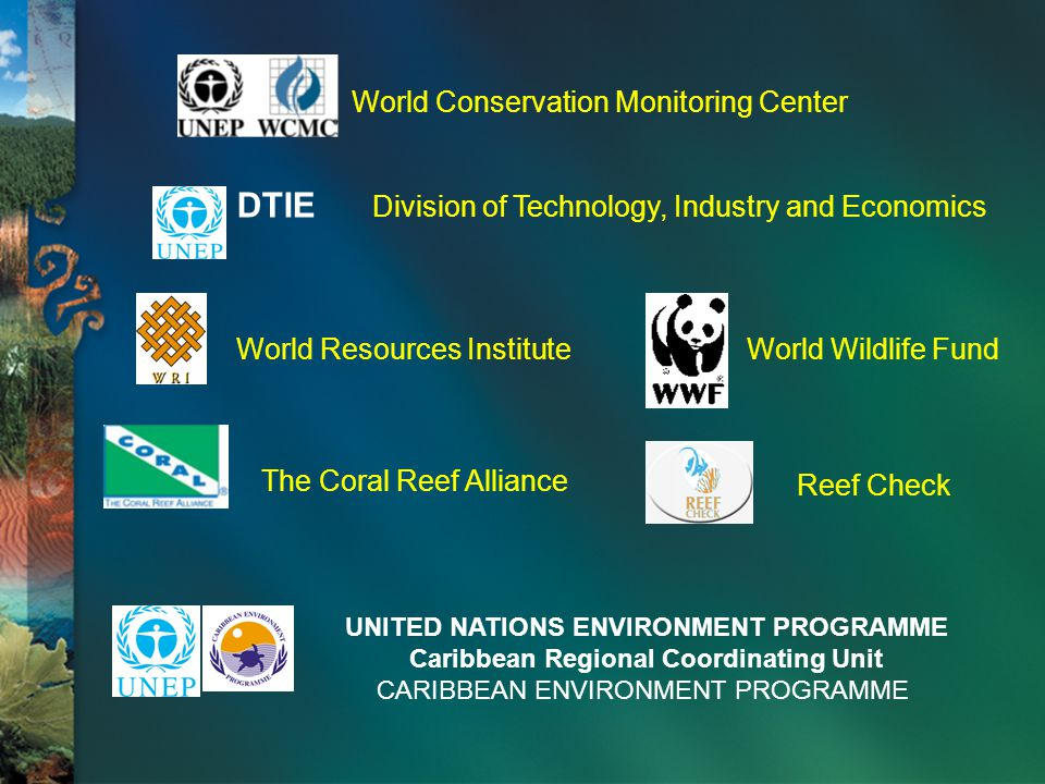 DTIE Division of Technology, Industry and Economics Reef Check World Resources InstituteWorld Wildlife Fund The Coral Reef Alliance World Conservation Monitoring Center UNITED NATIONS ENVIRONMENT PROGRAMME Caribbean Regional Coordinating Unit CARIBBEAN ENVIRONMENT PROGRAMME
