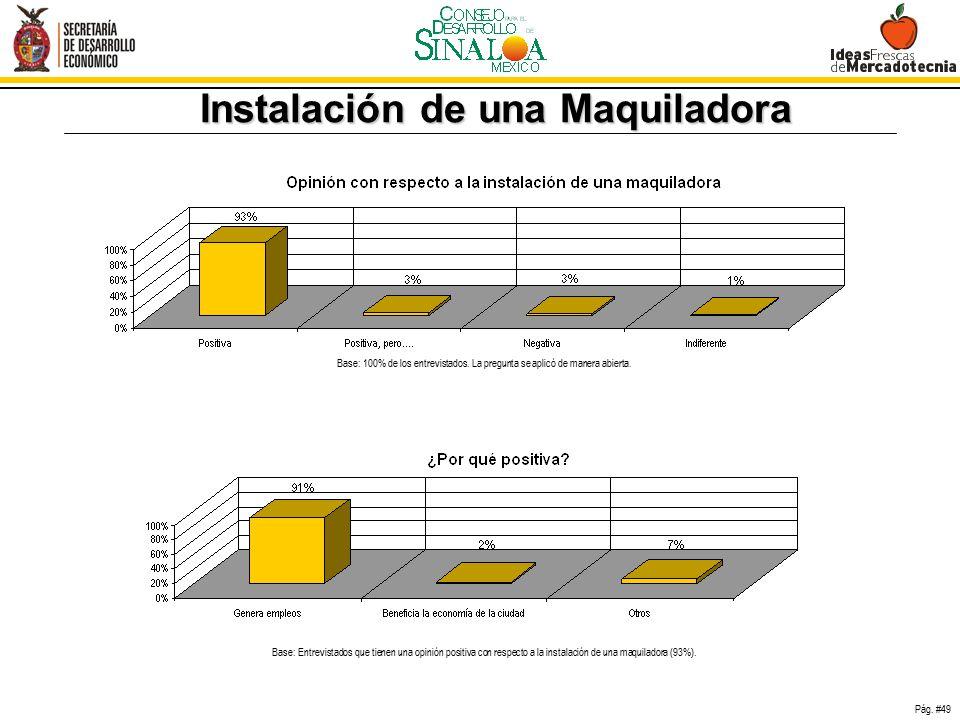 Investigación de Mercadotecnia Mazatlán Sinaloa 95e1023c451