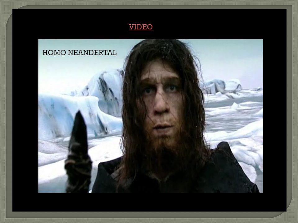 HOMO NEANDERTAL VIDEO