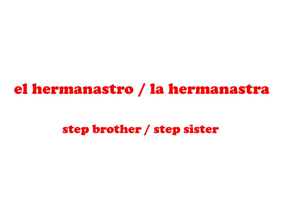 el hermanastro / la hermanastra step brother / step sister