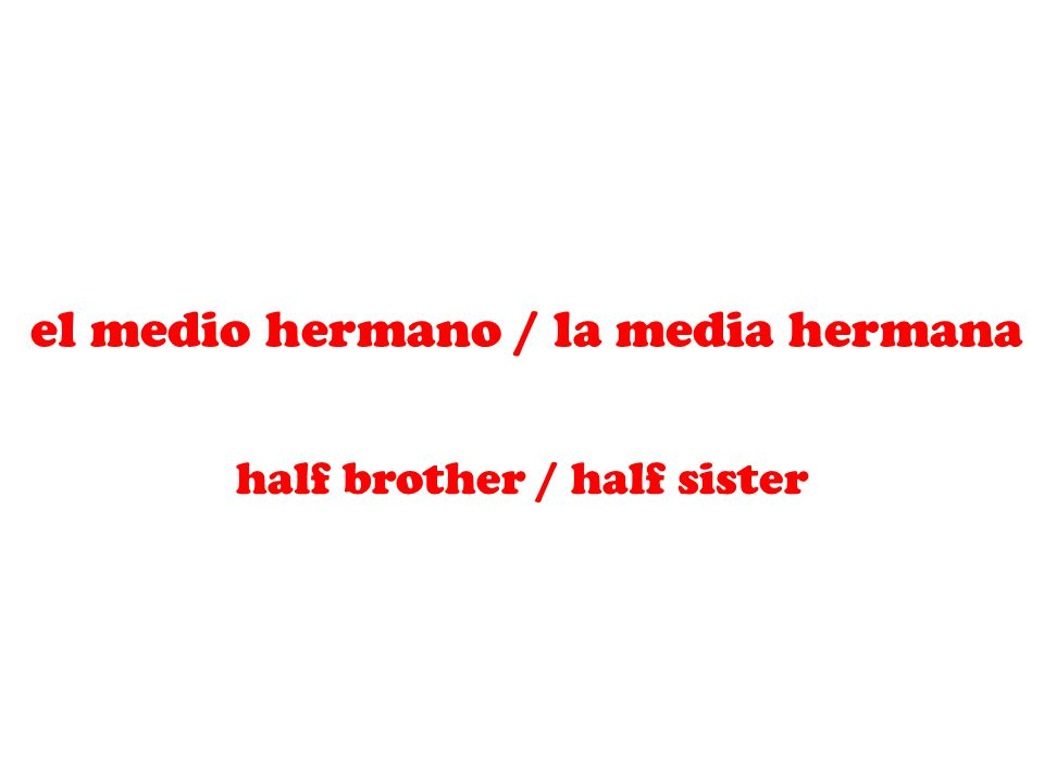 el medio hermano / la media hermana half brother / half sister