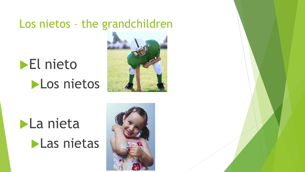 Los nietos – the grandchildren  El nieto  Los nietos  La nieta  Las nietas