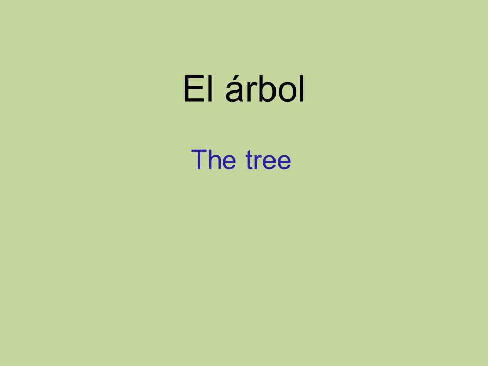 El árbol The tree