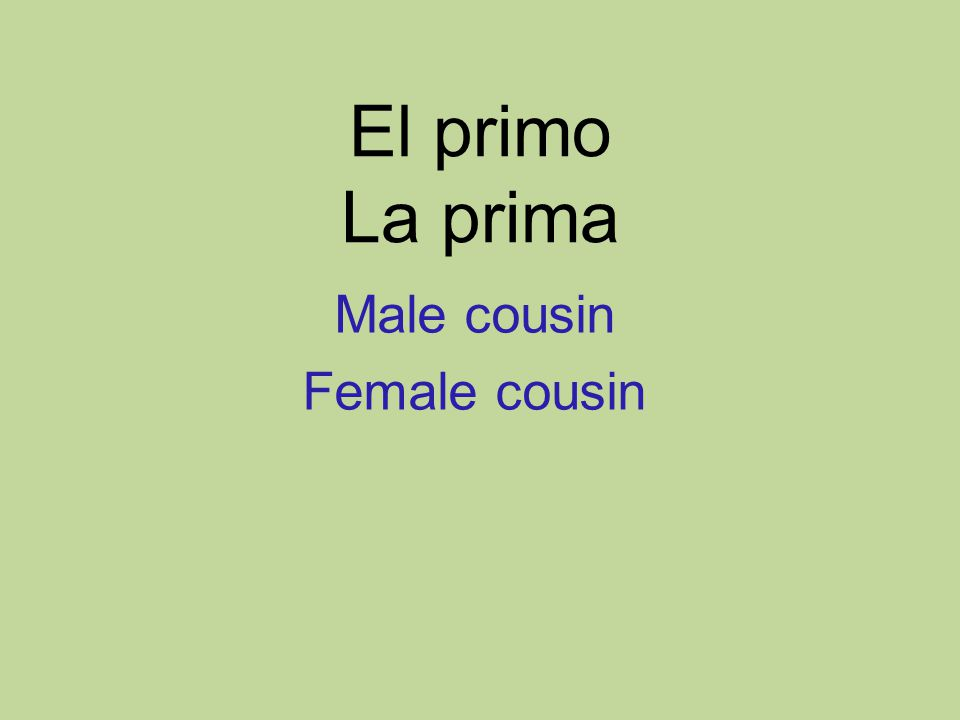 El primo La prima Male cousin Female cousin