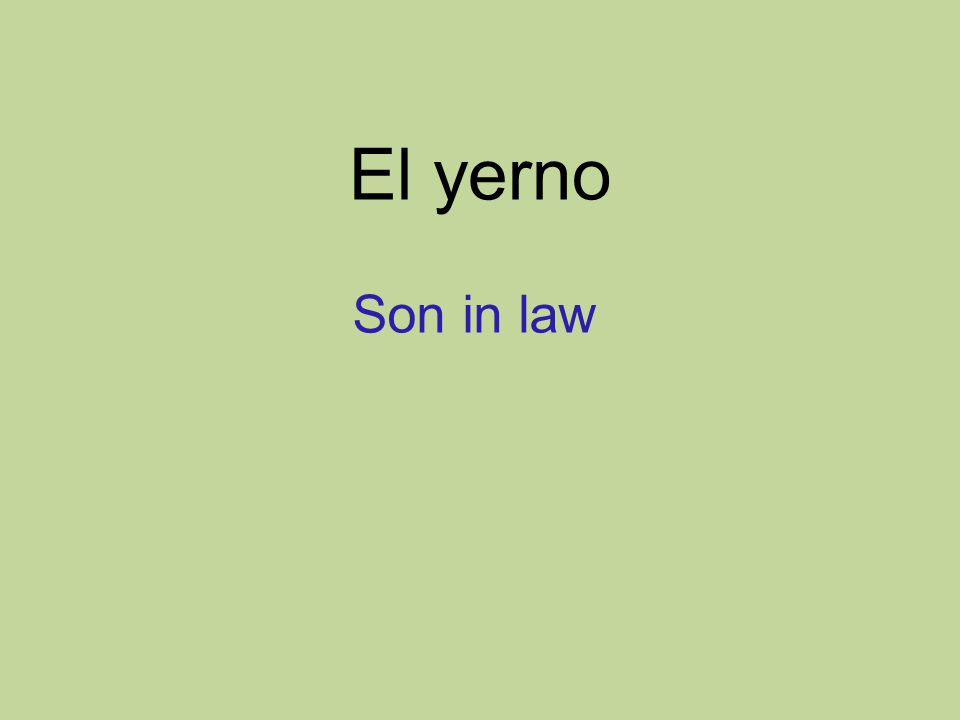 El yerno Son in law